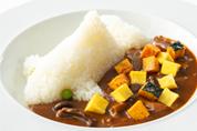 シャチライス千葉県産ビーフと秋野菜のハヤシソース<br> (スープ付)