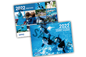 2022年鴨川シーワールドオリジナルカレンダー
