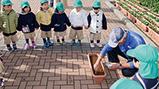春の花催事「鴨川シーワールド 花まつり2017」に向けて園児たちが菜の花の種まきを実施しました。