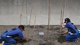 東条海岸で今年初めてアカウミガメの産卵を確認